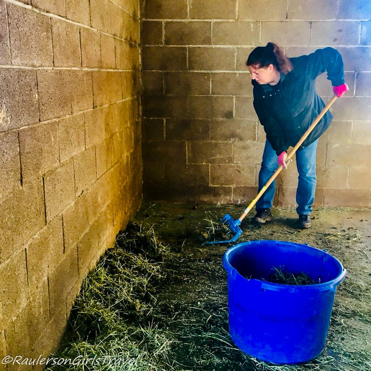Heather Mucking out the Stalls