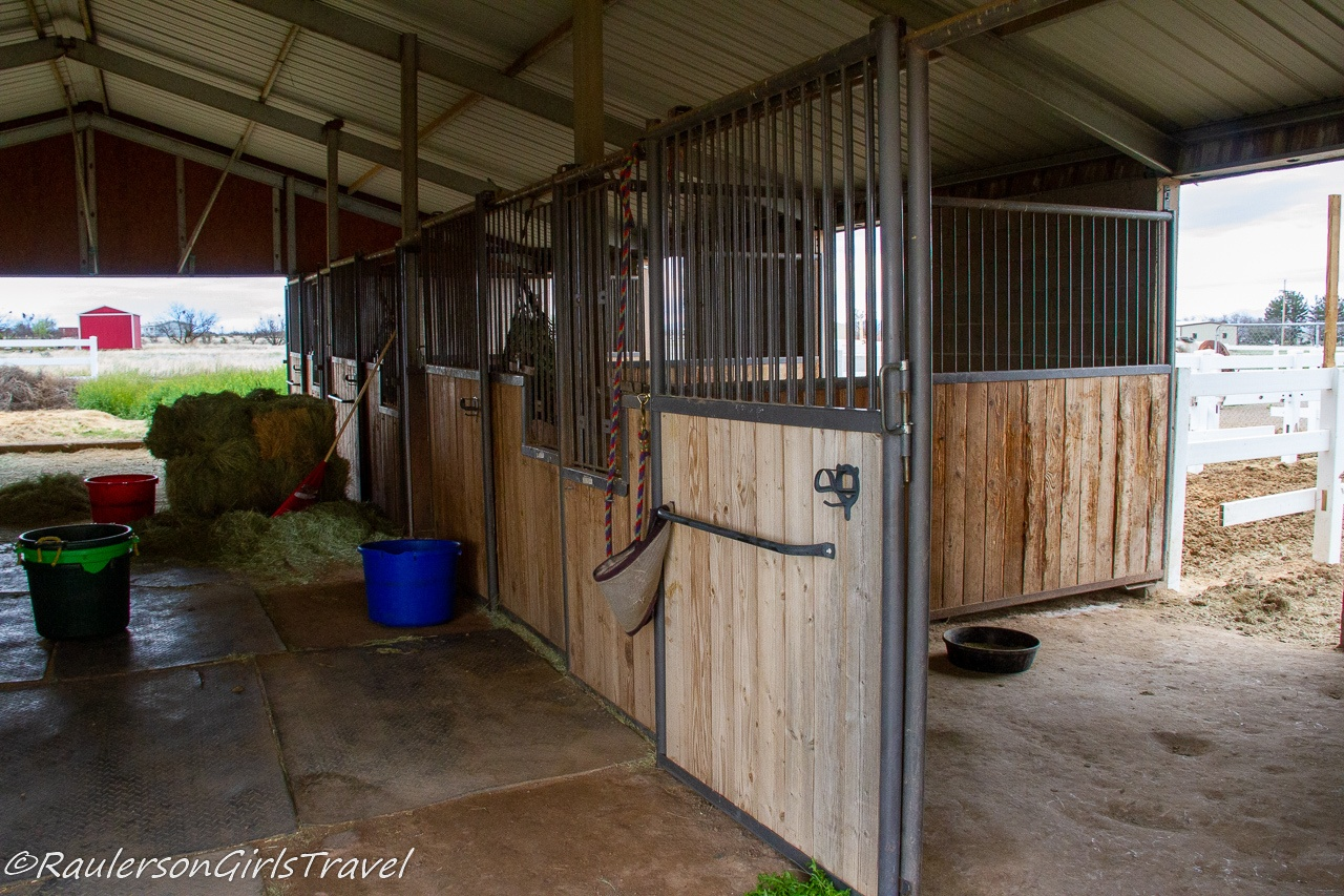 Cleaning the stalls in the barn