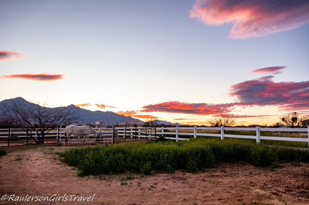 Hannah and the Huachuca Mountains at Sunset