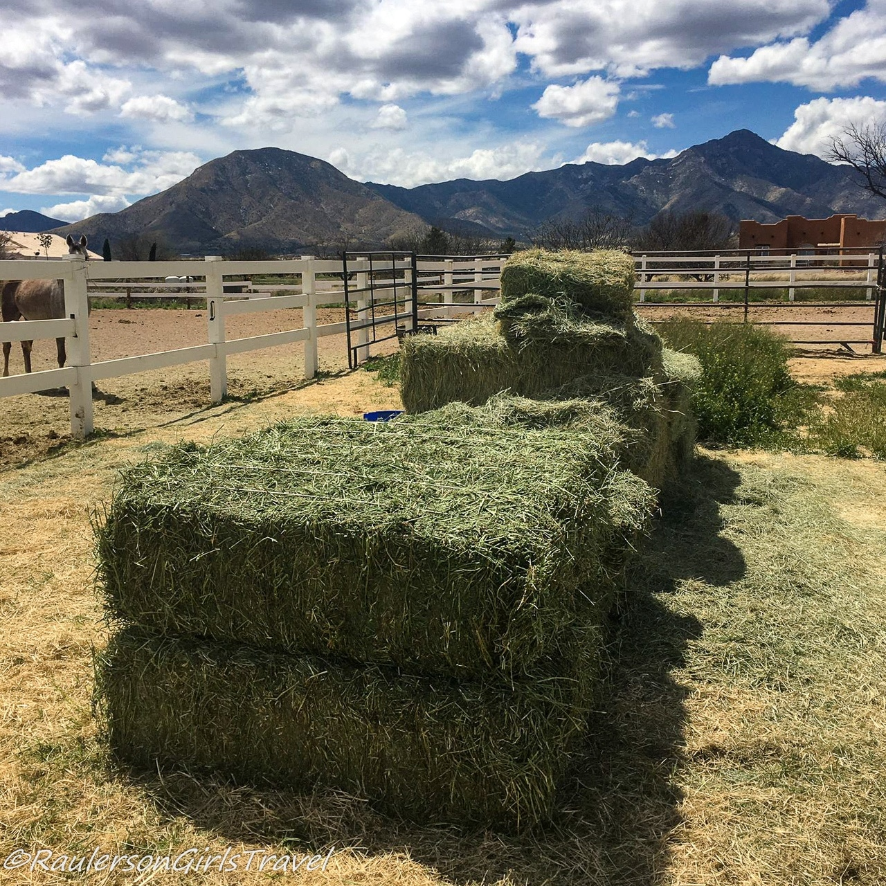 Stacks of Hay and Alfalfa for the horses