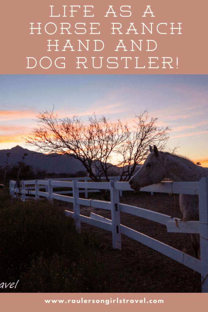 Horse Ranch Hand Pinterest Pin