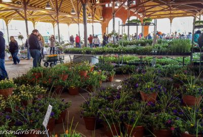 Vendors selling Plants and Flowers at the Eastern Market