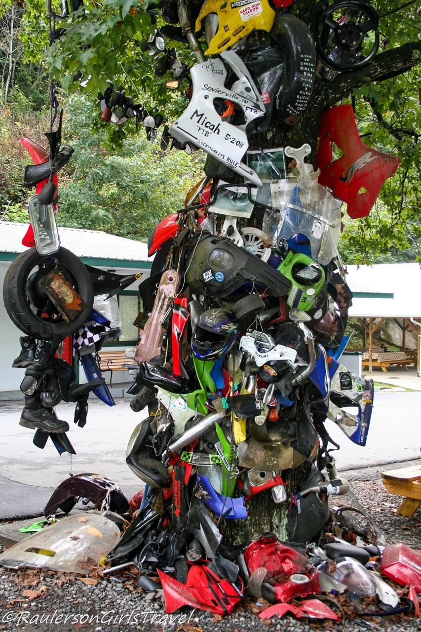 Close-up of Tree of Shame at Deals Gap Motorcycle Resort