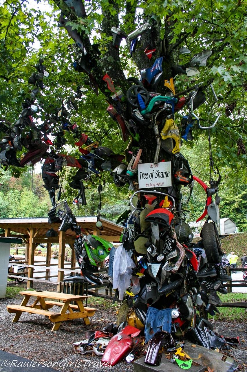 Tree of Shame at Deals Gap Motorcycle Resort