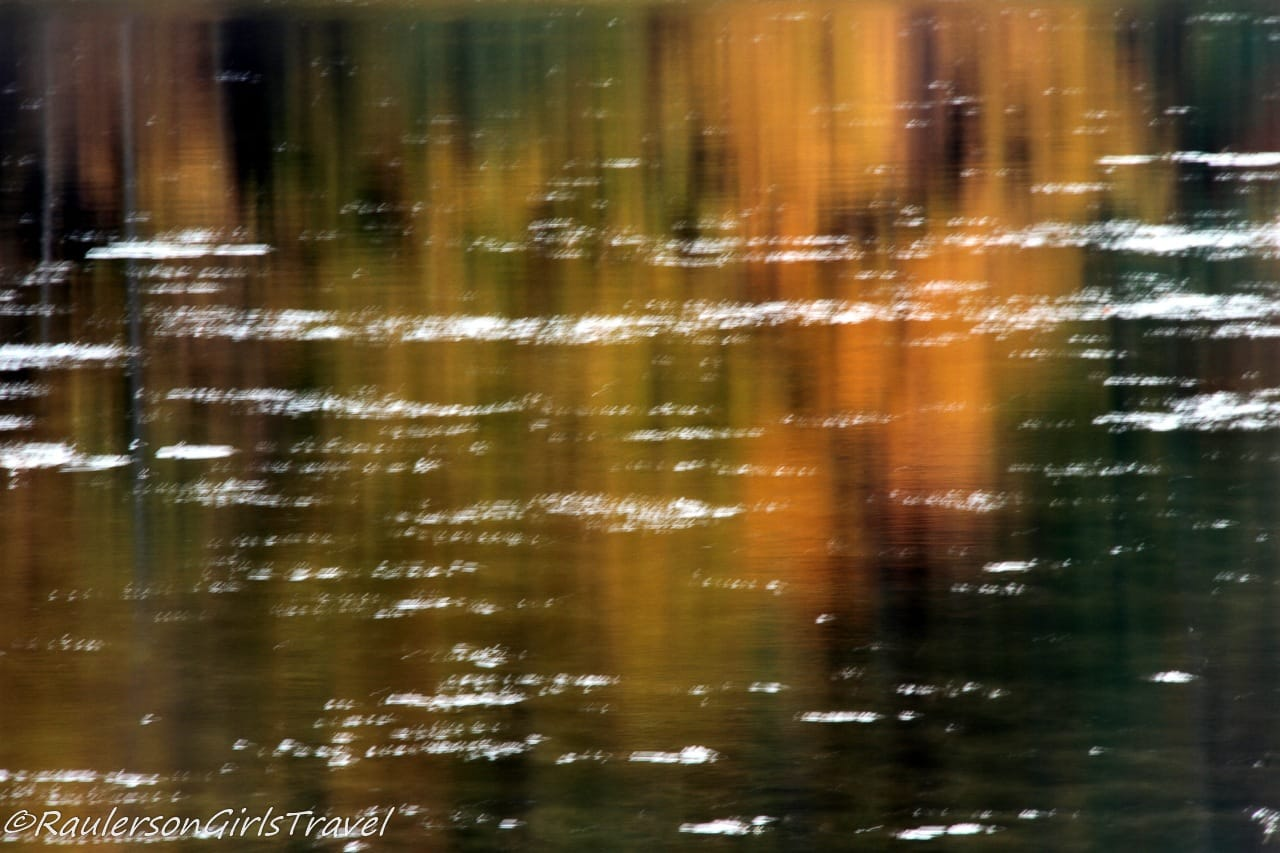 Fall Trees Reflecting in Water