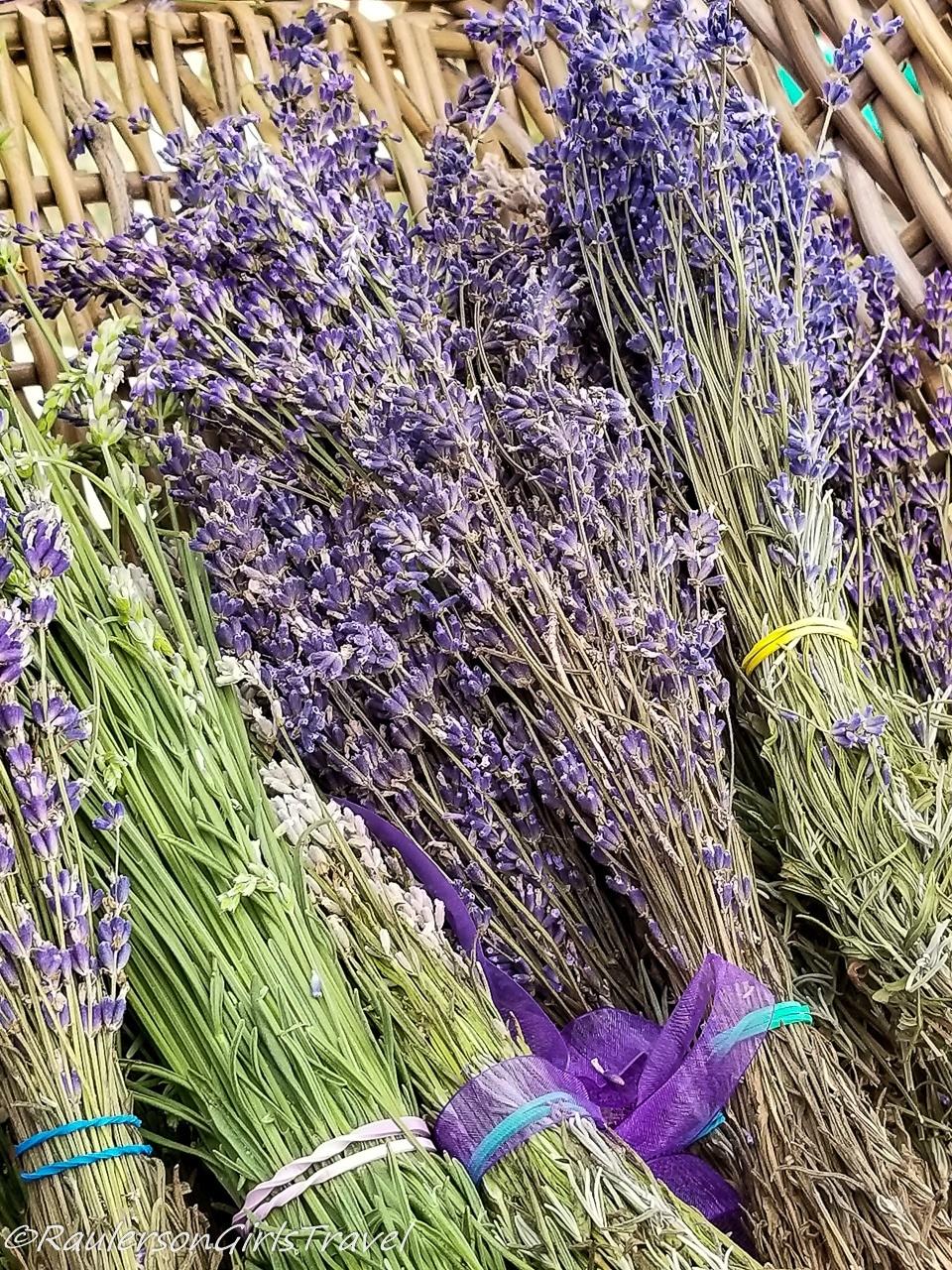 Rubber-band bundles of lavender in a basket