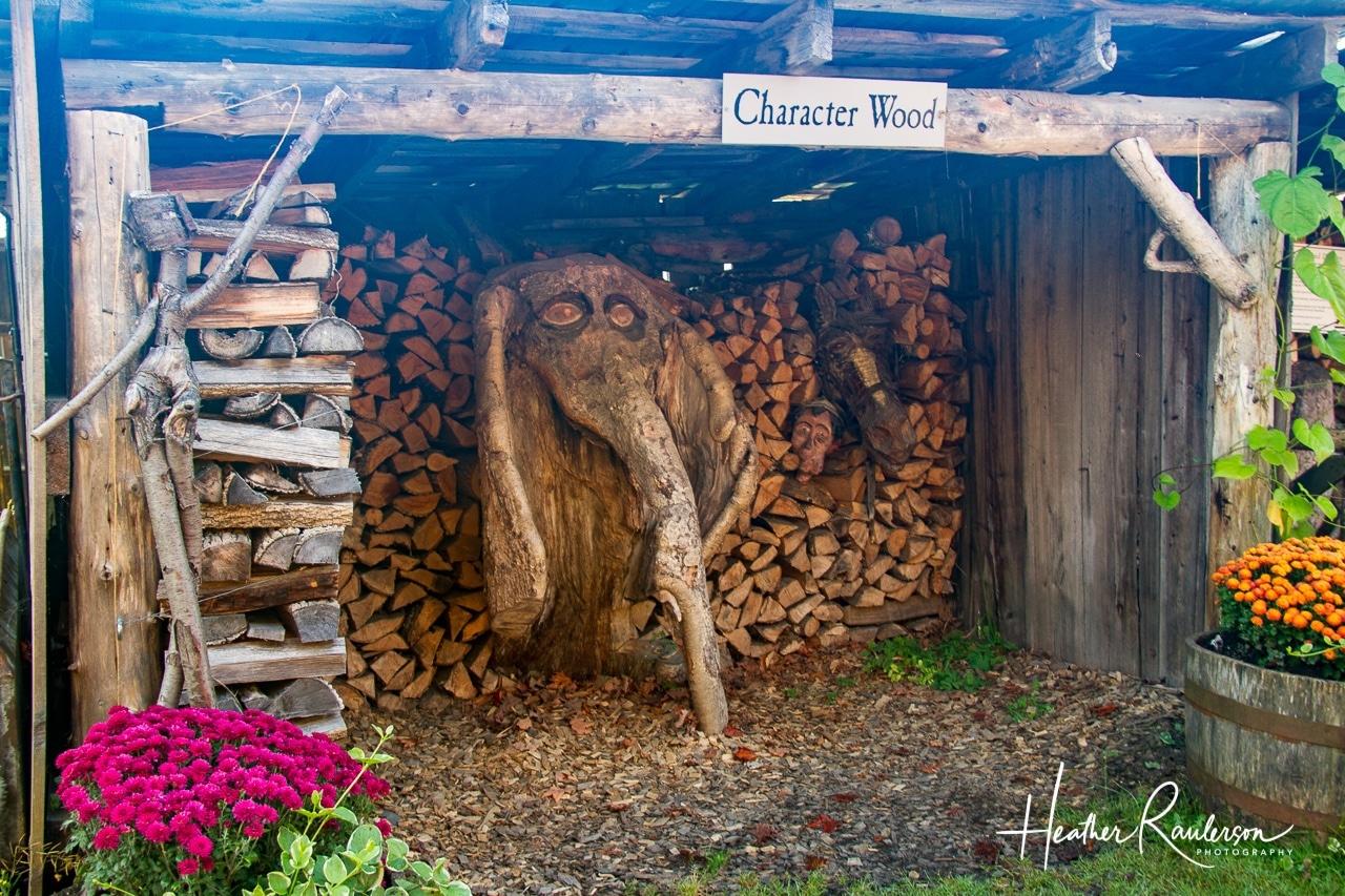 Character Wood at Morse Farm