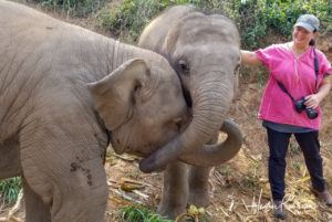 Heather with the Elephants in Thailand