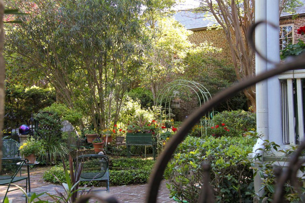 Garden in Charleston