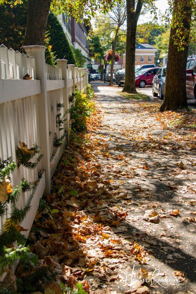 Leaves on a sidewalk in Woodstock, Vermont