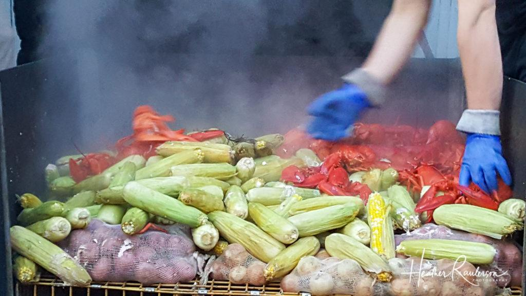 Maine Lobsters, Corn, and Potatoes being steamed