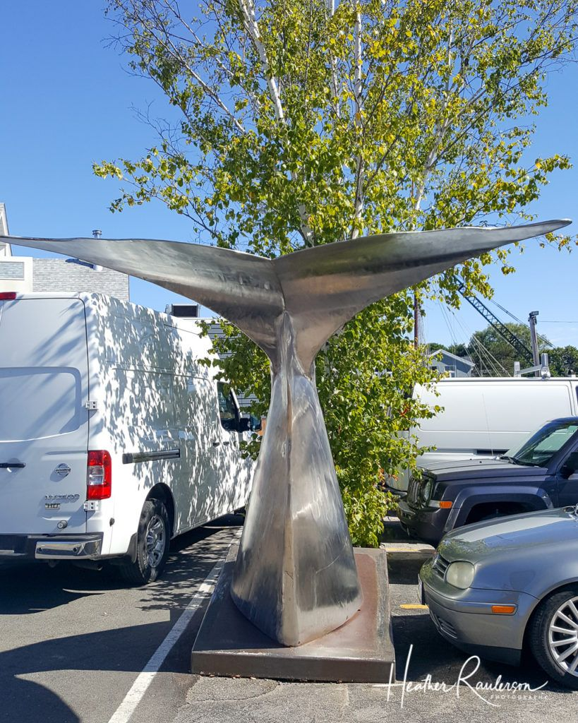 Whale Tail Sculpture in a parking lot in Kennebunkport