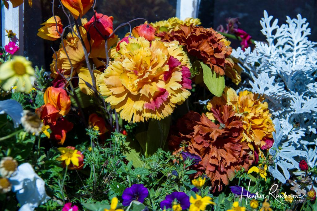 Fall flowers in a window box display