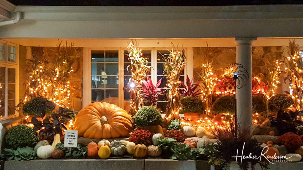 Fall Decorations at the Anchorage by the Sea