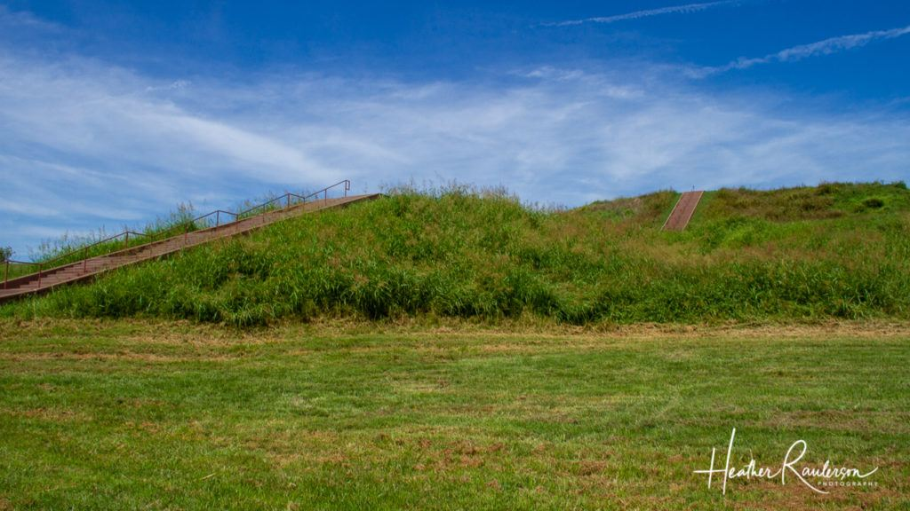 The First Terrace of the Monks Mound