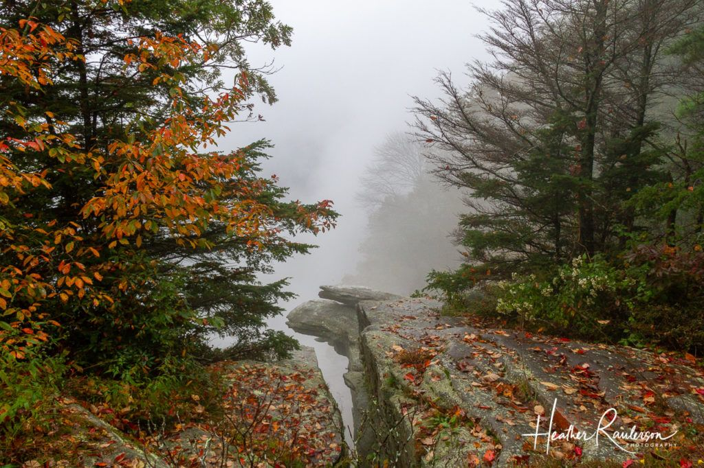 A Foggy Devils Kitchen in South Carolina