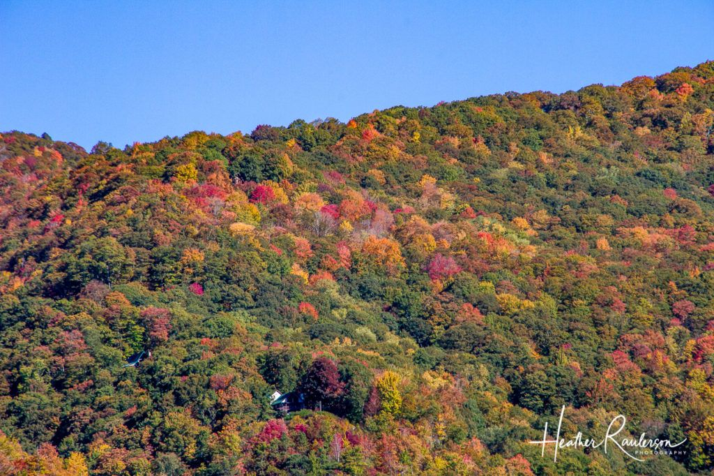 Fall Colors in Maggie Valley, North Carolina
