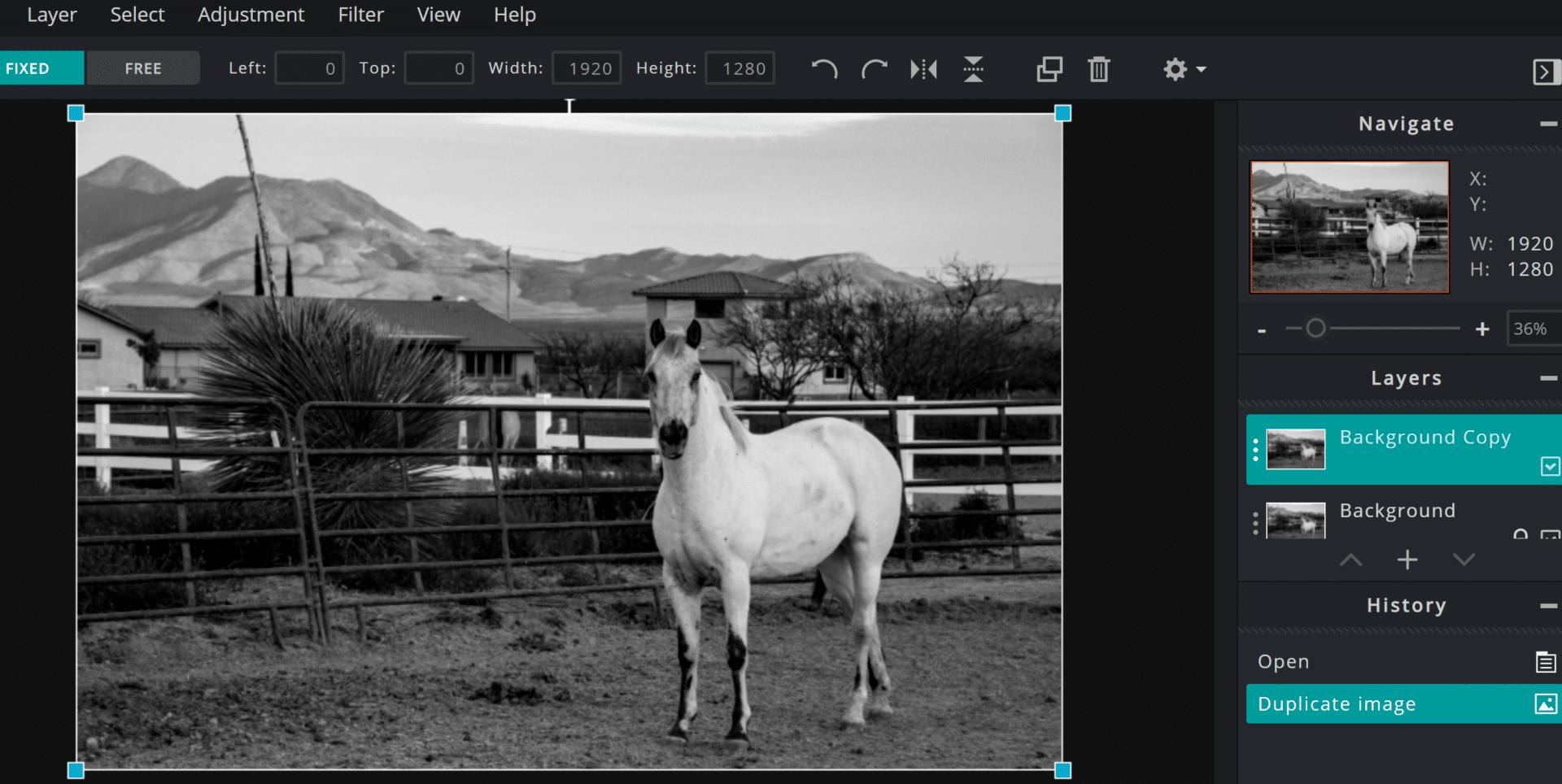 Duplicate image in Pixlr E